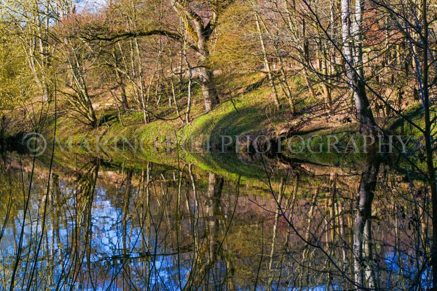 Symmetric reflections on the Croquet river